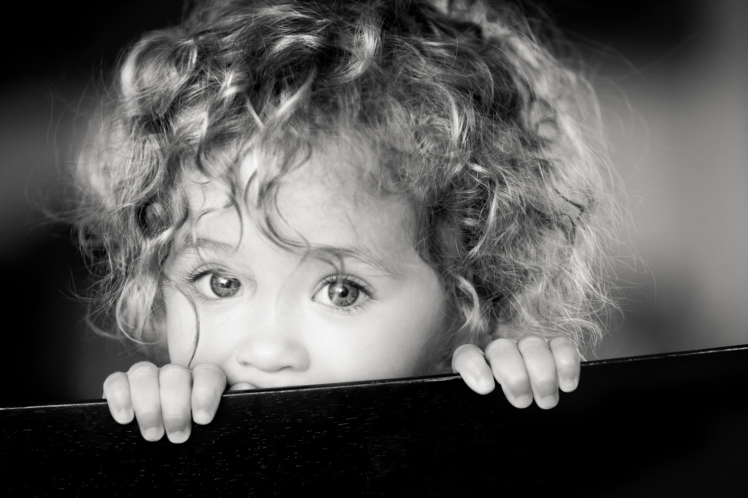 Shirley Temple by Michael DeMicco