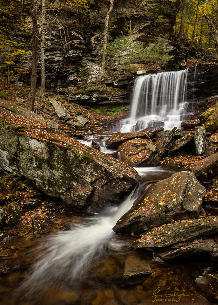 B. Reynolds Falls - Ricketts Glen, PA by Ryan Gallagher