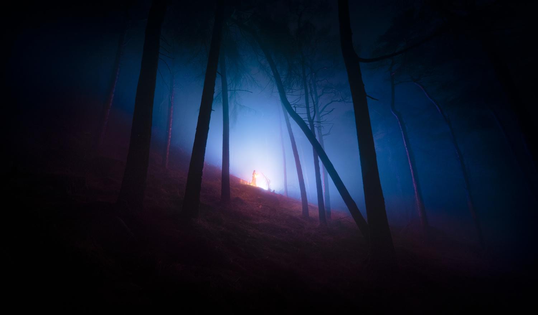 Forest Enchantment II by Ben Lockett