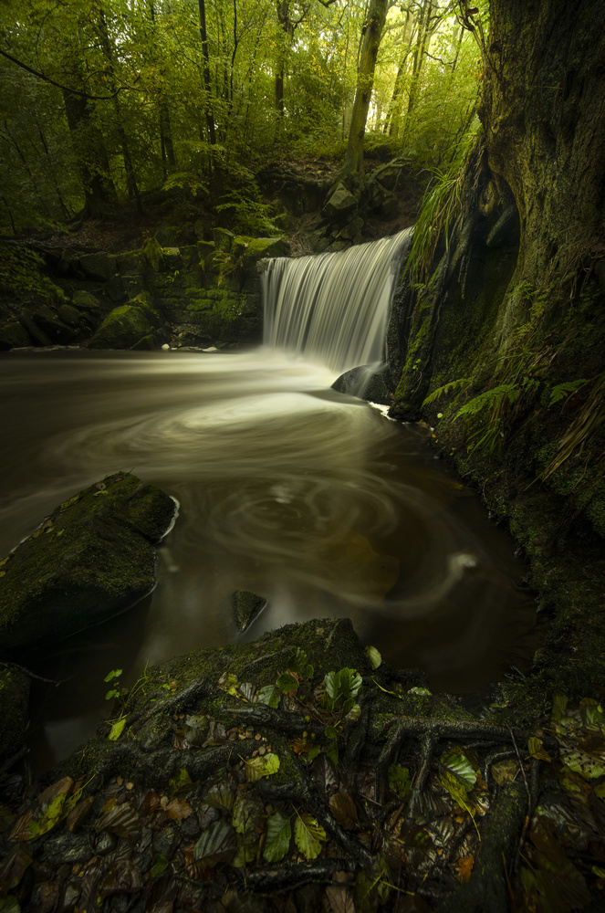 Forest Waterfall by Ben Lockett