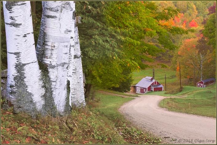 Sugar Shack, Reading, Vermont by Olga Sergyeyeva