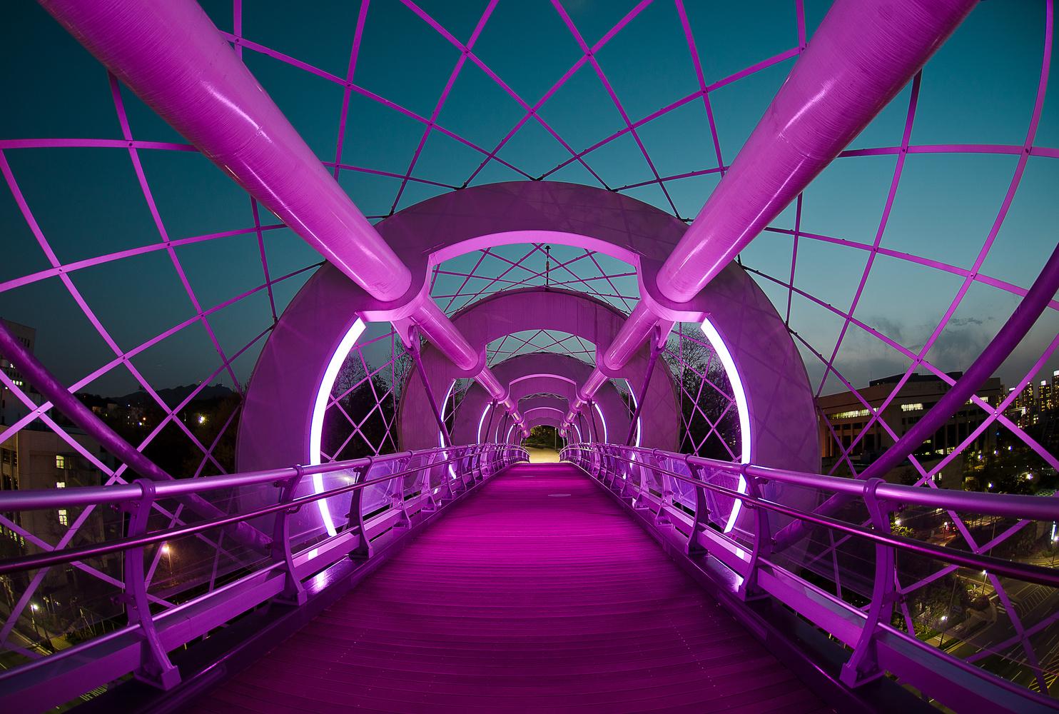 Silkworm Bridge by Justin Howard