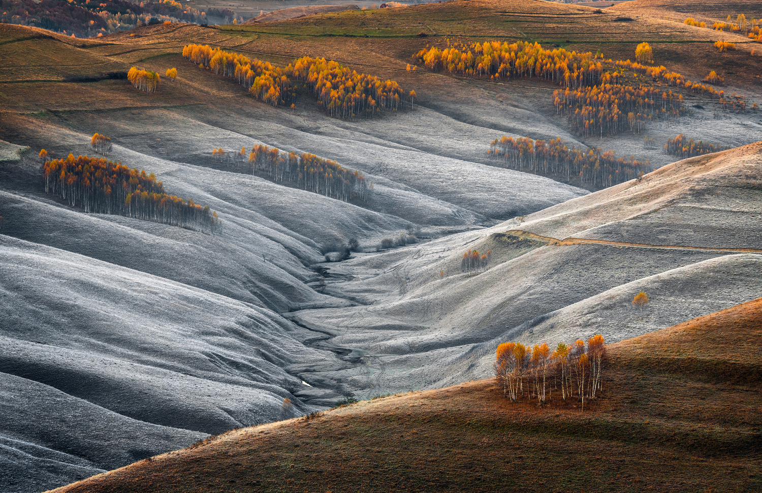 The touch of winter by Alex Robciuc