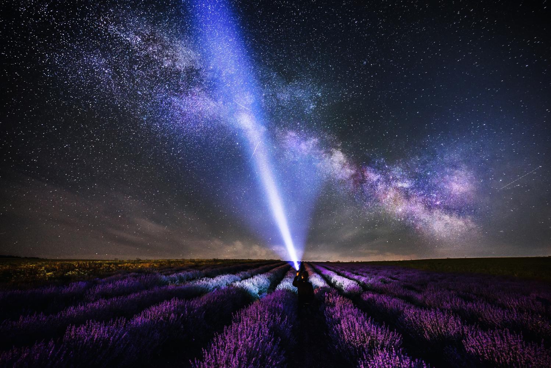 Lavender field under the milky-way by Alex Robciuc