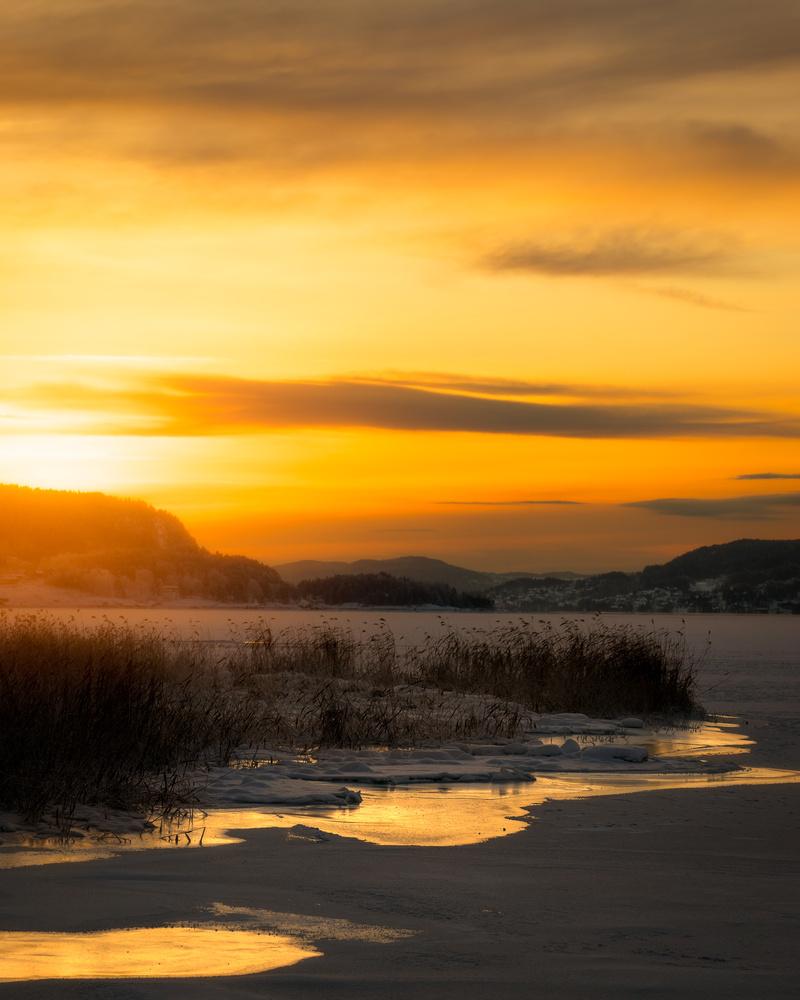 Winter sunrise  by Terje Karlsen