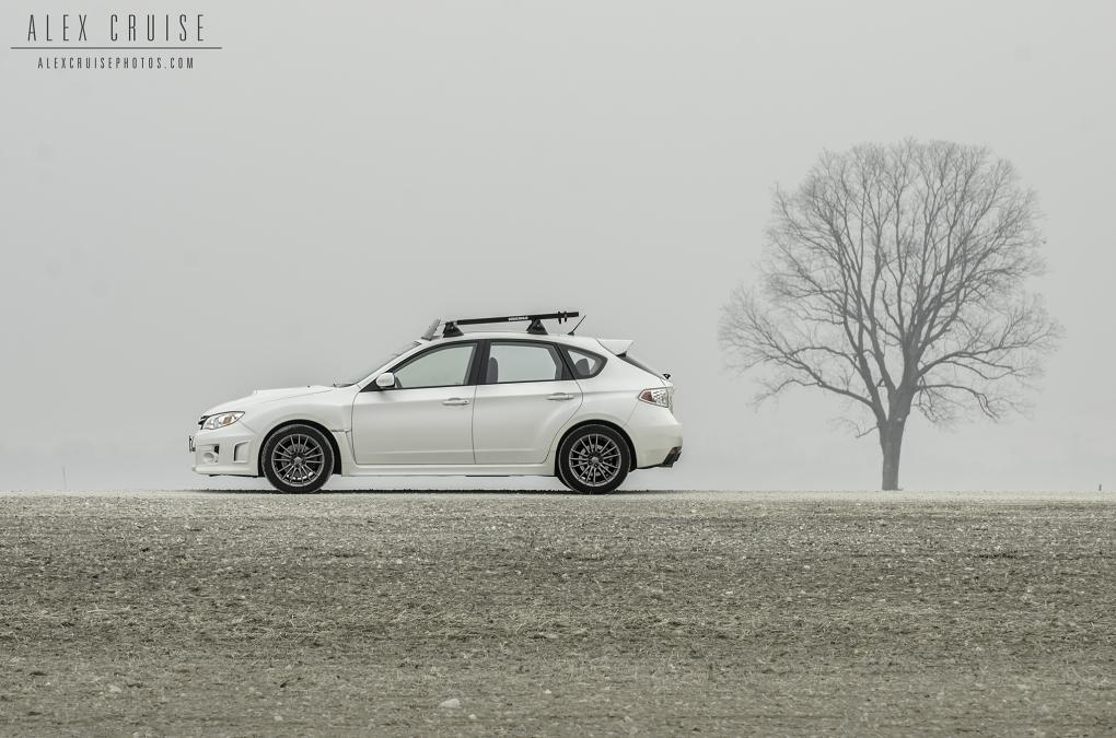 Foggy Morning by Alex Cruise