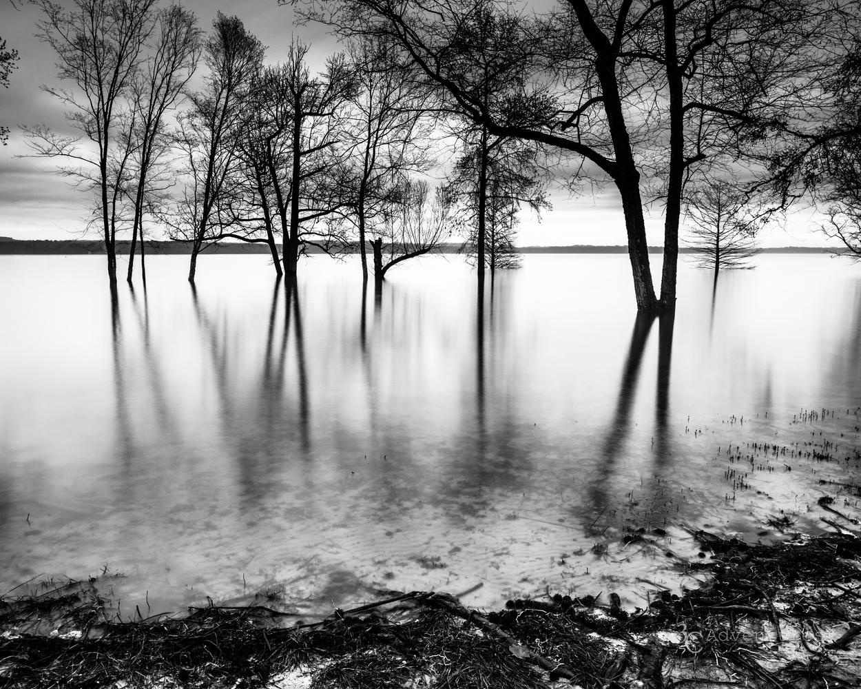 Serenity by David Campbell