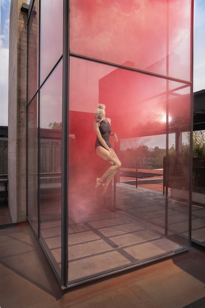 Red Velvet by ERIK VICINO