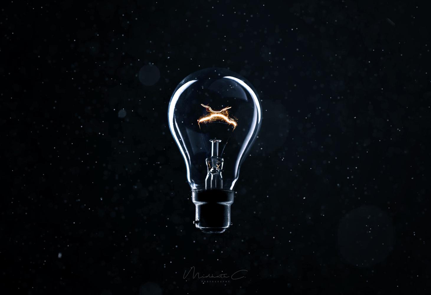 The Light Bulb by Midhath Chowdhury