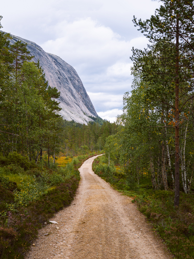 Hægefjell Nissedal, Norway 2017 by Jo Collier