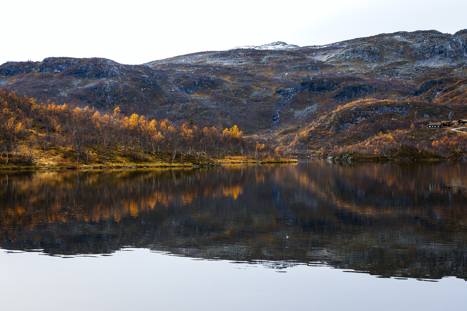 Reflecting fall colors by Jo Collier