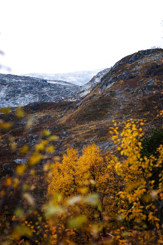 Haukeli, Norway by Jo Collier