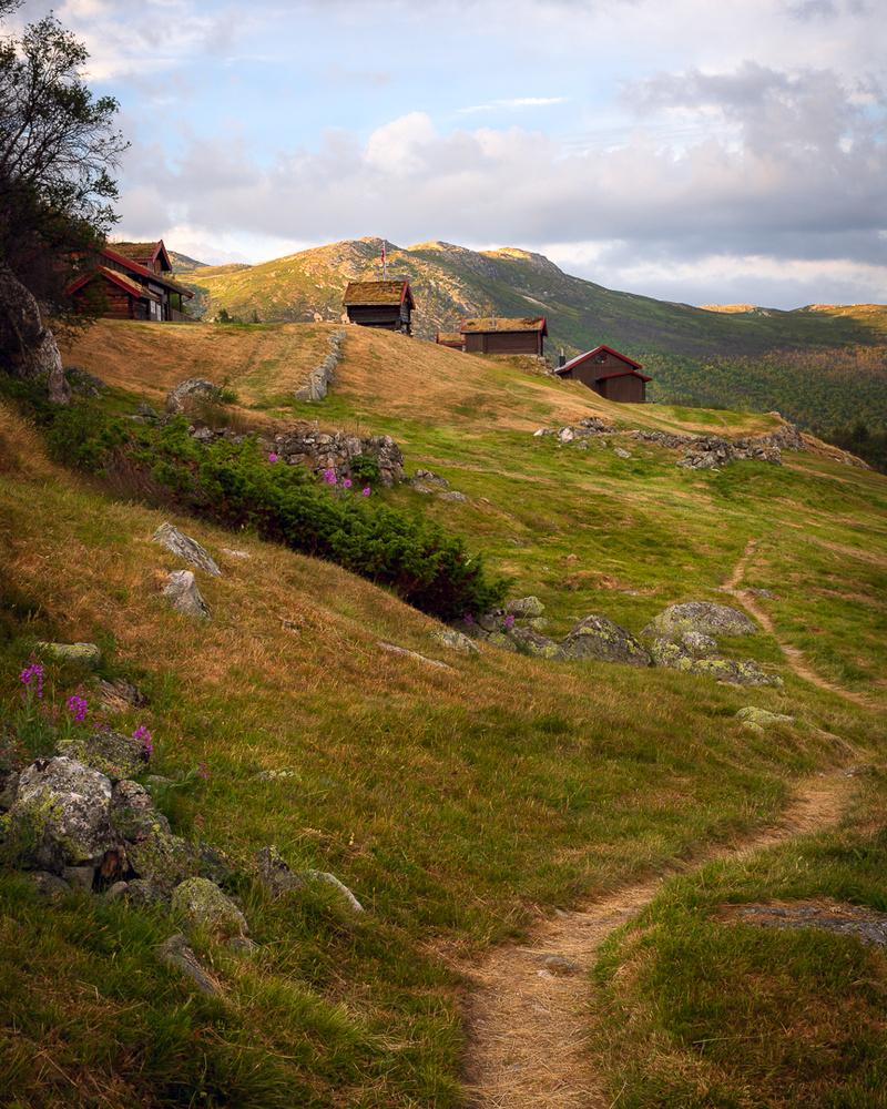 Norwegian Landscape by Jo Collier