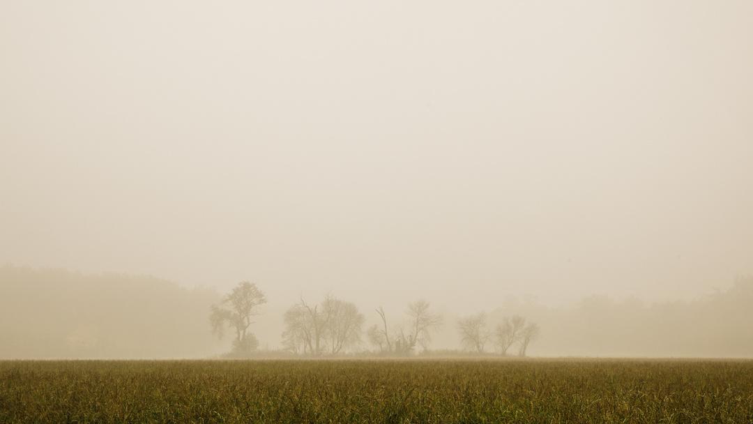 Behind the fog by Marcin Świostek