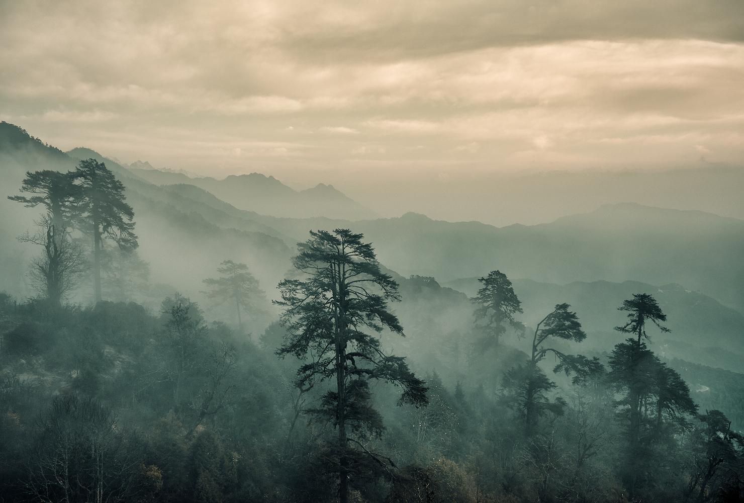 Bhutan: A Strange Mood. by Sebastian Leonhardt