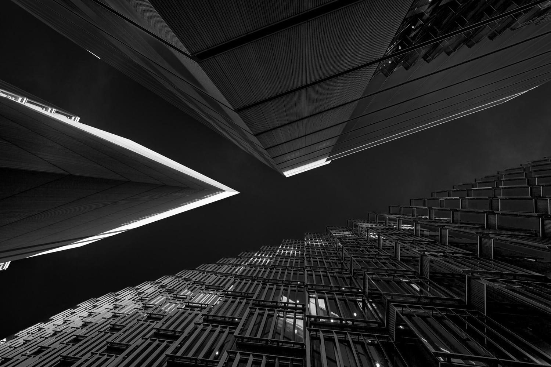 Y by Lee Pelling