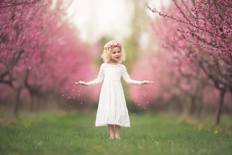 Spring Cometh by Daniel Venter