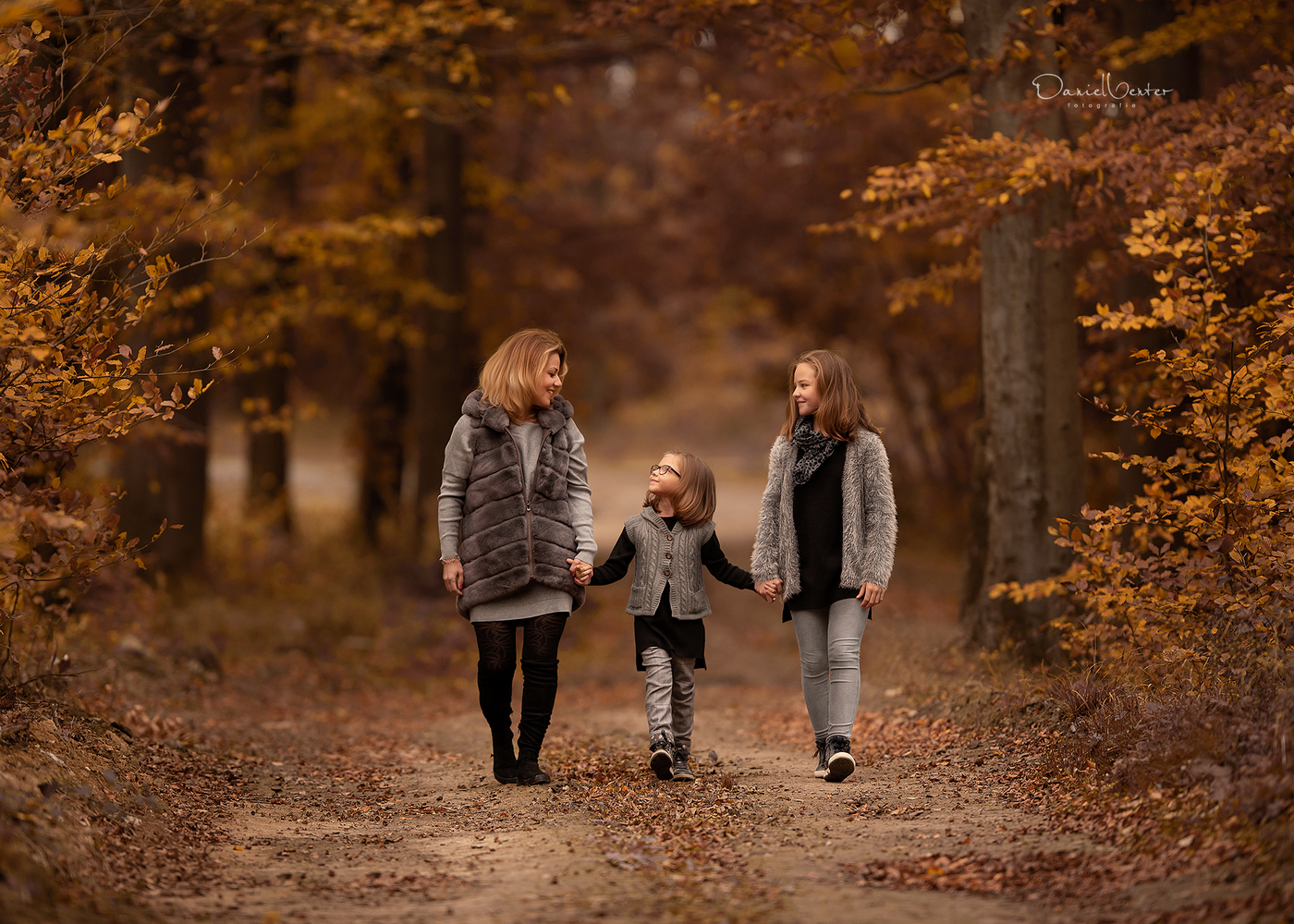 Autumn Walks by Daniel Venter