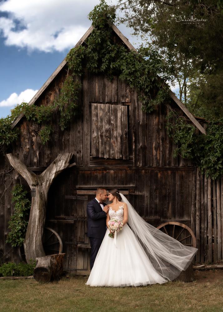 A rustic wedding by Daniel Venter