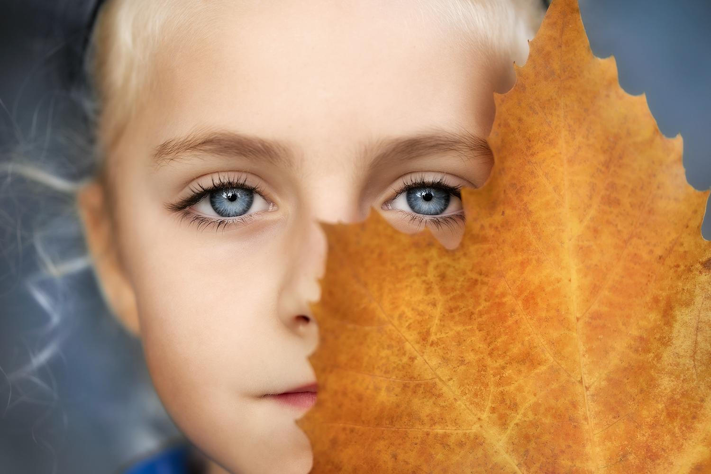 Autumn Mysteries by Daniel Venter