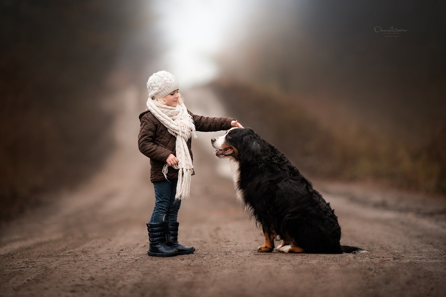 Marley and Me by Daniel Venter