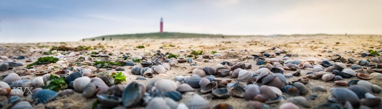 Winter Texel Lighthouse  by Gellert Kovacs