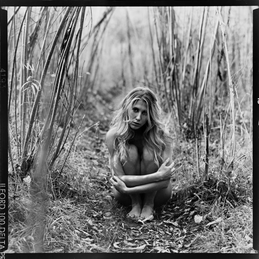 Raphaella by Craig Fleming