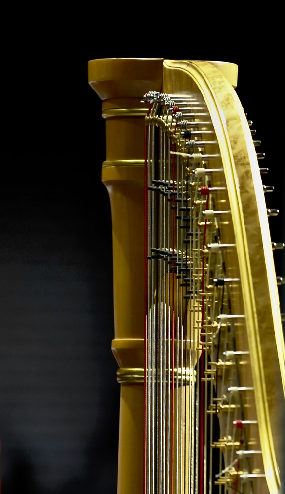 Music Details by John Taylor