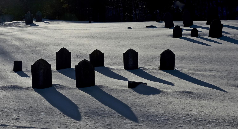 Quiet Shadows by John Taylor