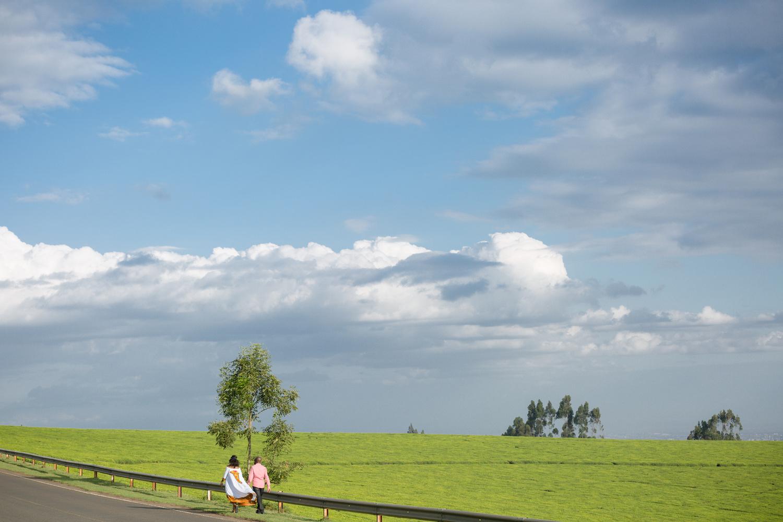 The Love Walk  by Antony Trivet