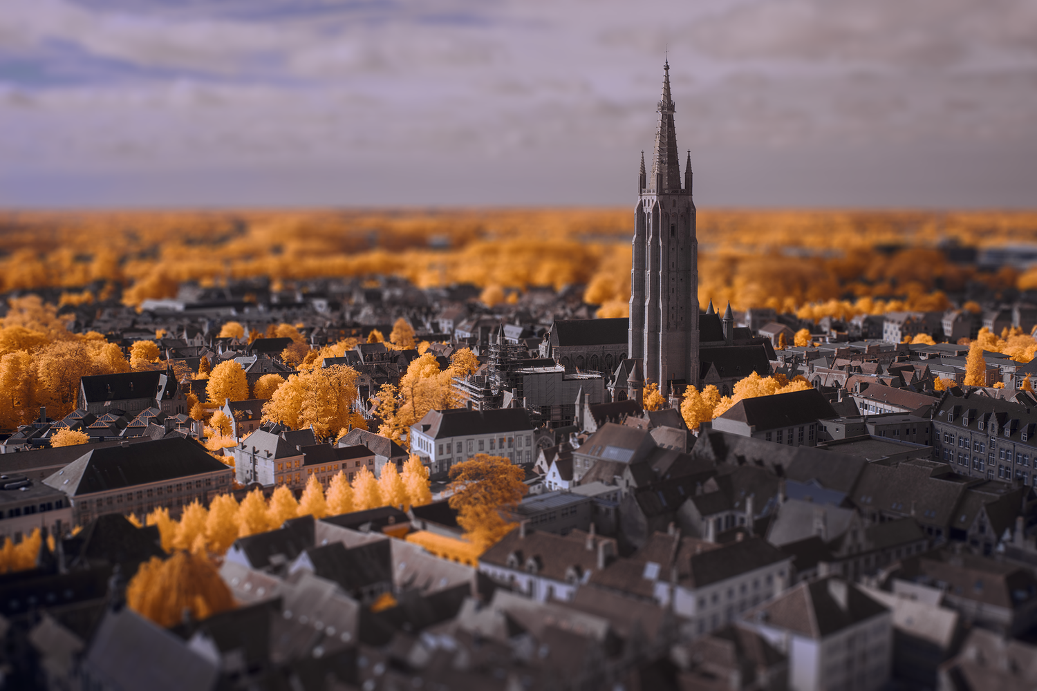 Bruge Mini by Edward Noble