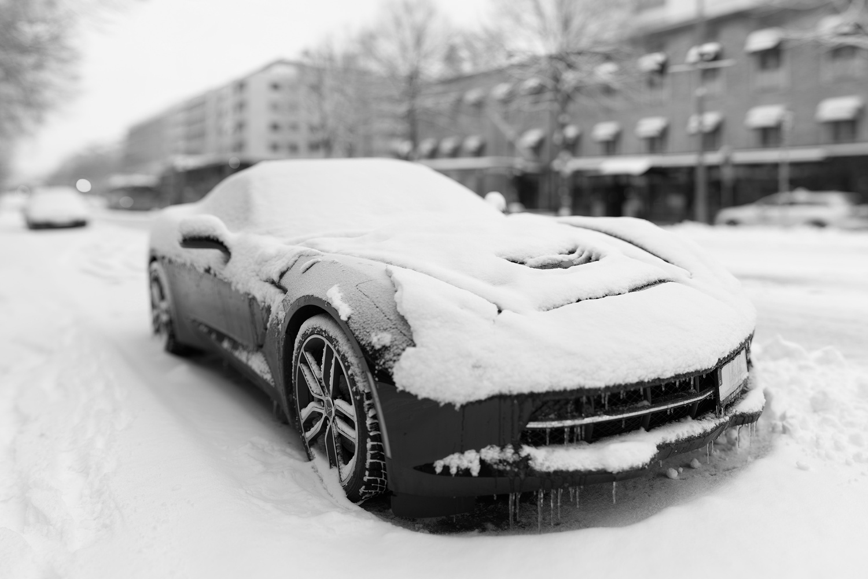 Snow Vette by Edward Noble