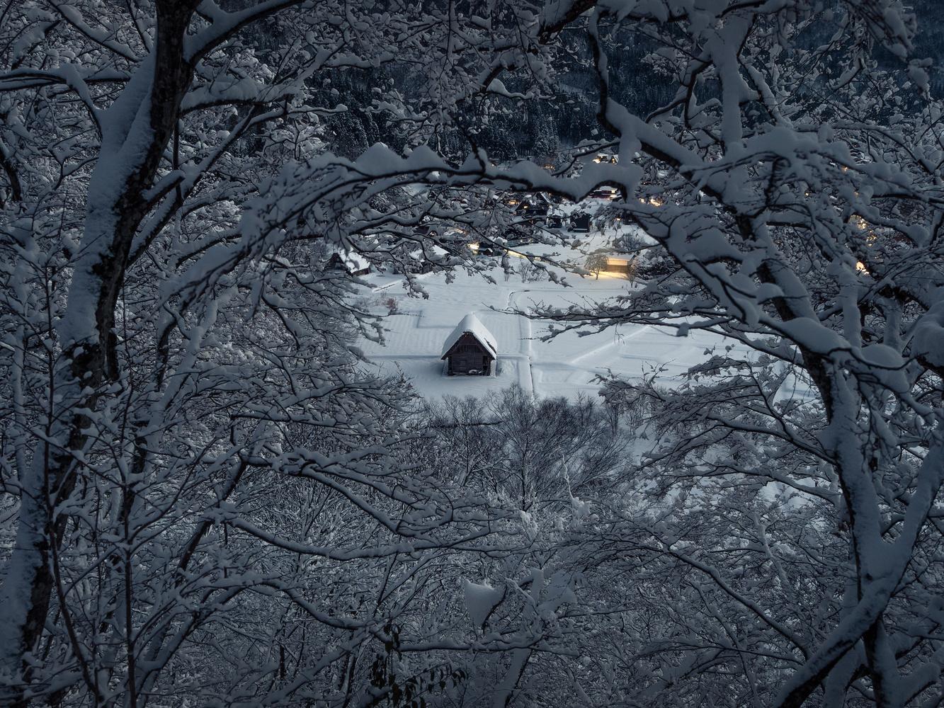 alone. by Taiyo Yamamoto