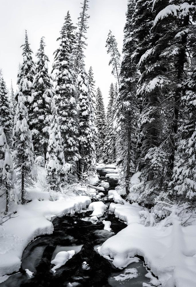 Crossing Tumalo Creek by TYLER YATES