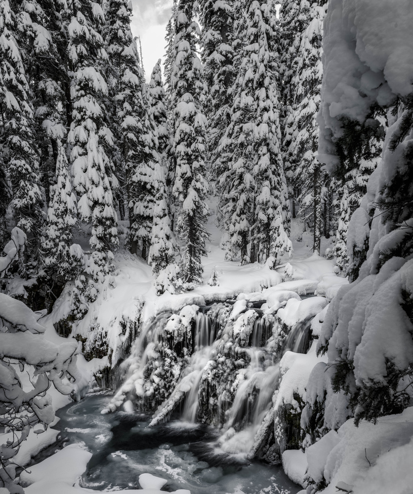 Tumalo Creek by TYLER YATES