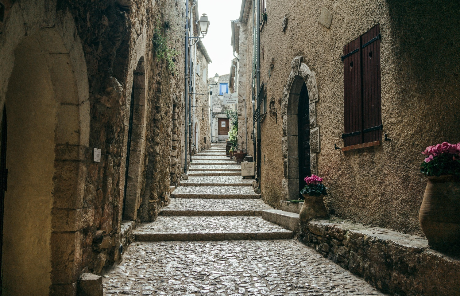 Saint-Agnes by TYLER YATES