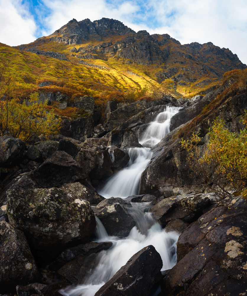 Reed Creek Falls by TYLER YATES
