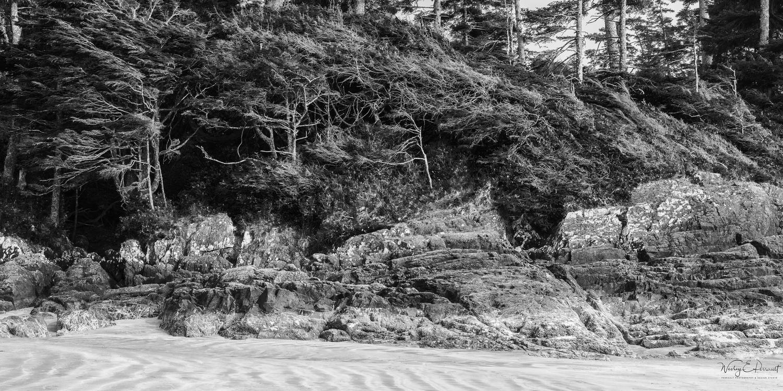 Chestermans Beach by Wesley Perrault