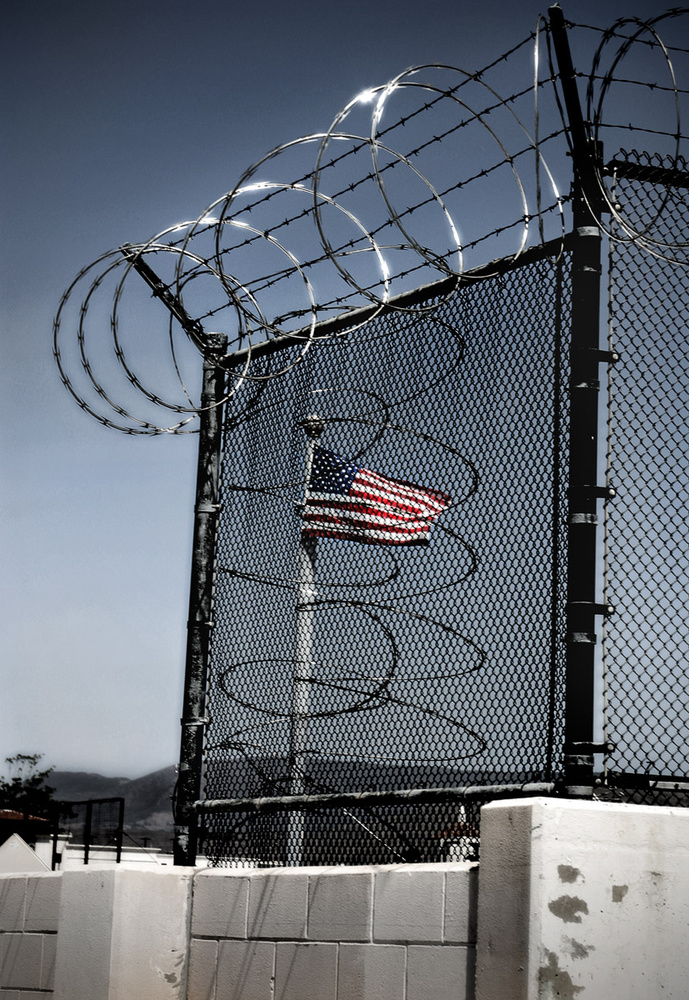 Caged Freedom by Dan Williams
