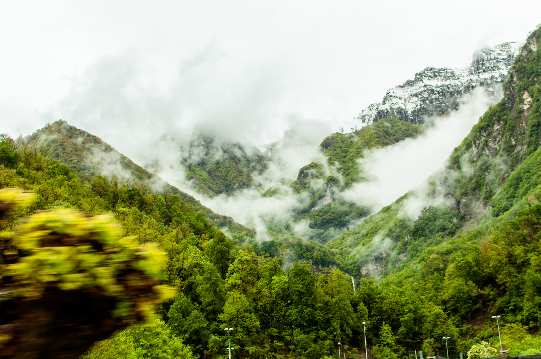Fog by Amit Shwarts