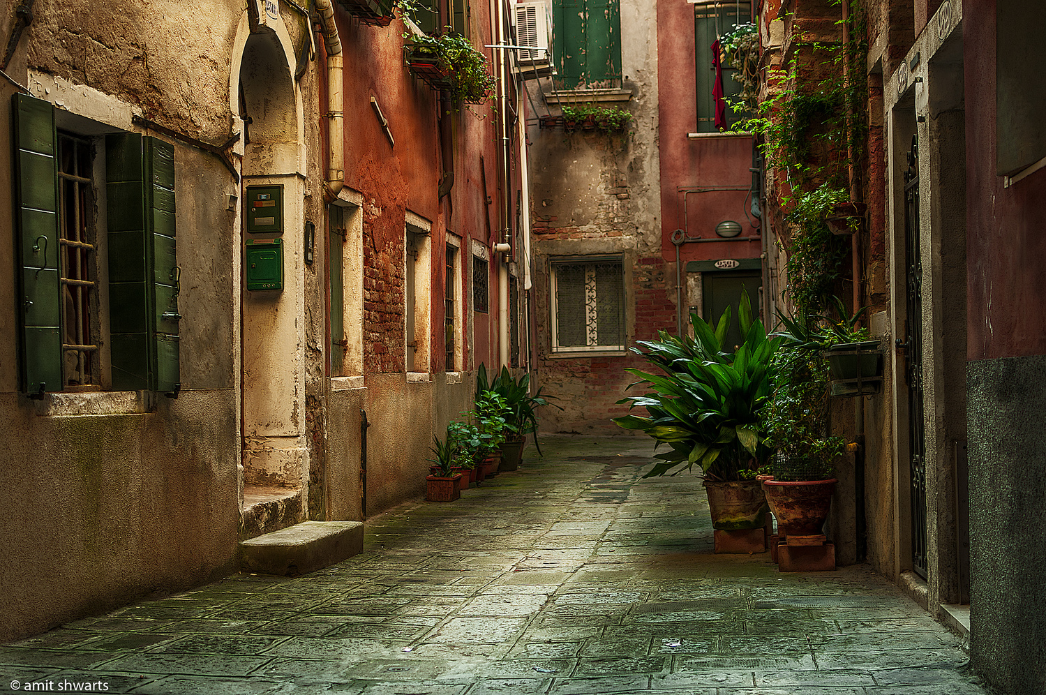 Behind Venice by Amit Shwarts