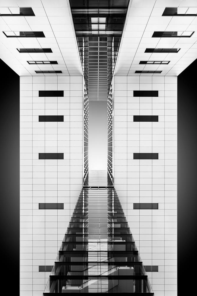 Look Up by Brian Lichtenstein