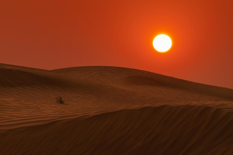 Saskatchewan is Mars by Mike Yackulic