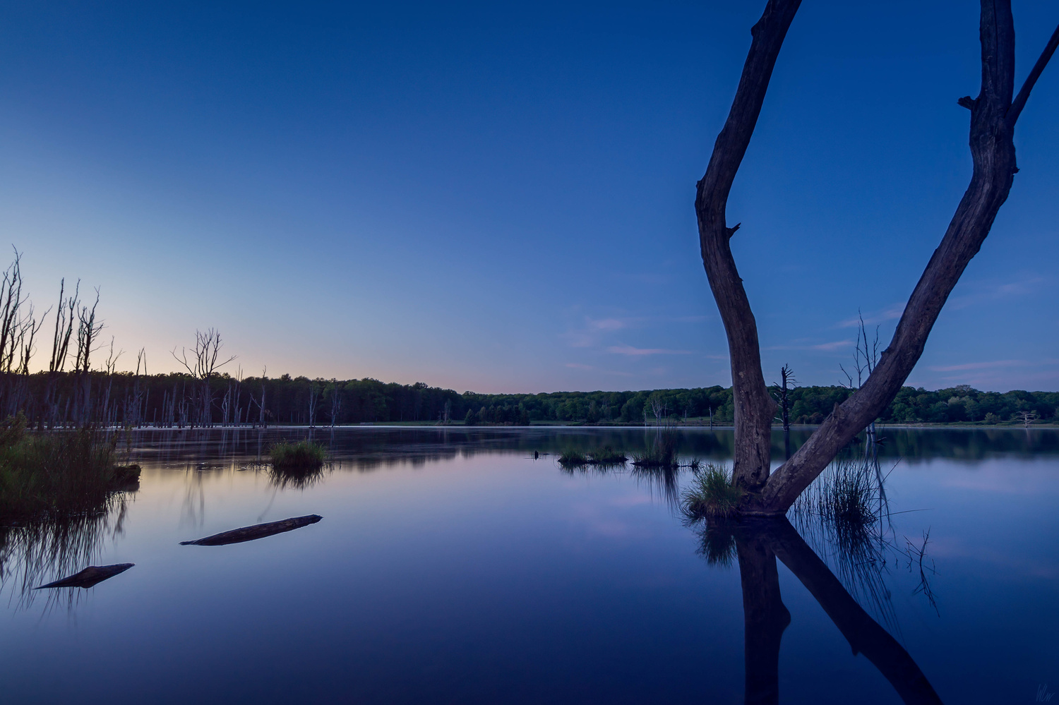 Tranquility by Warren Carr
