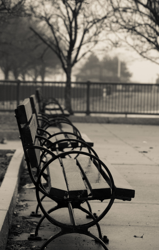 empty bench by Tom Cox