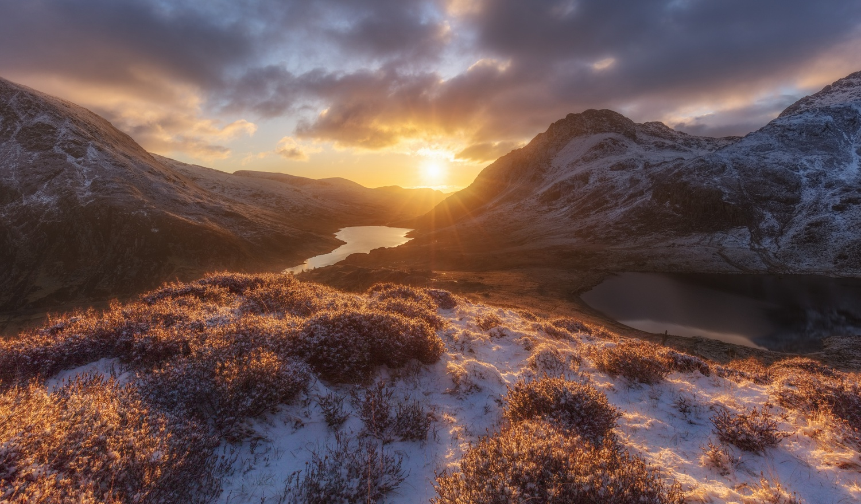 Morning Star by Richard Beresford Harris