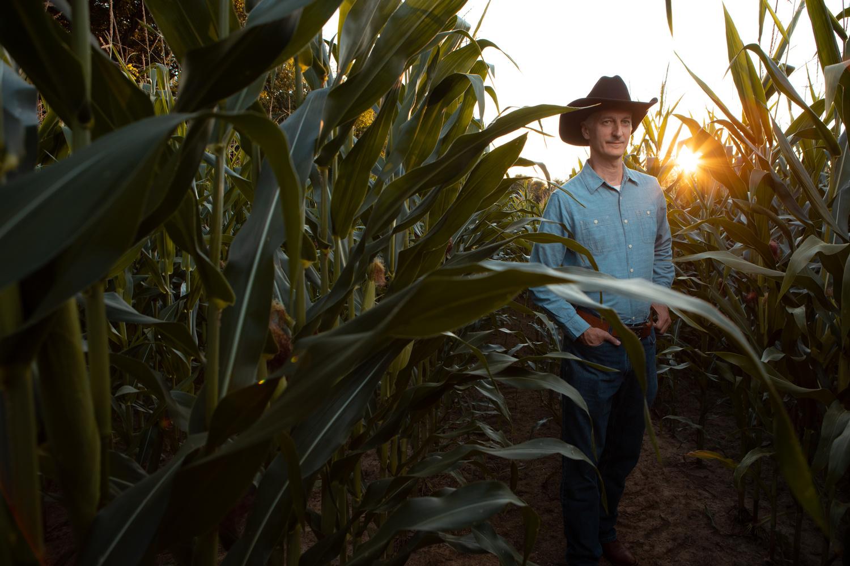 Portrait in the Corn by benjamin lehman