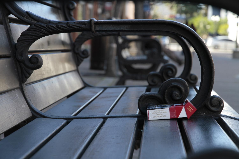 Bench on the Promenade by Gerry Hammarth