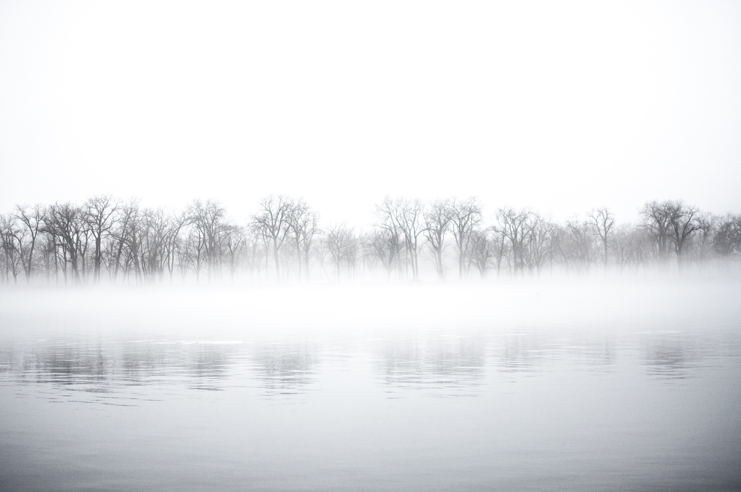 Foggy River by jason stuempges