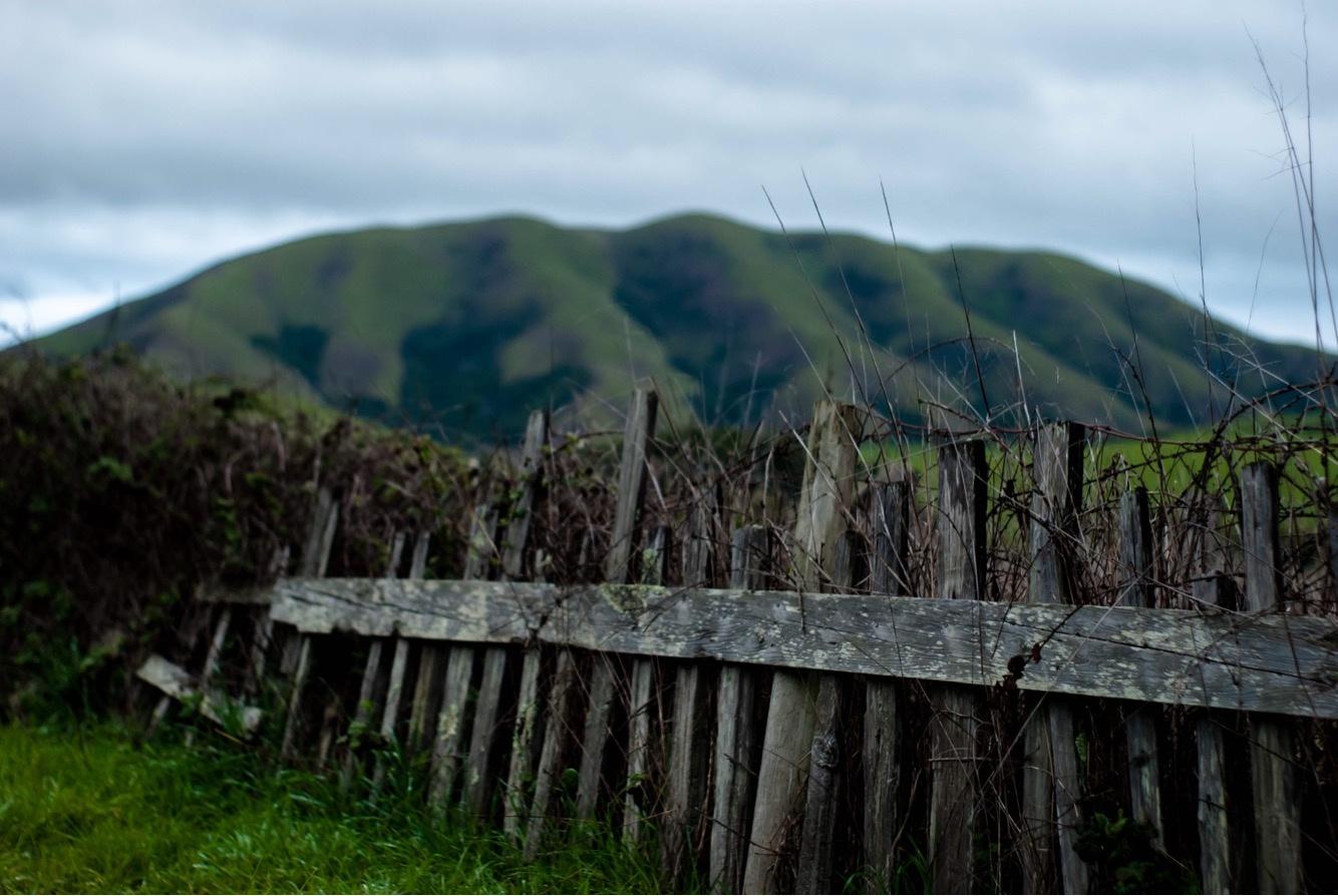 Black Mountain by Elizabeth Hollis